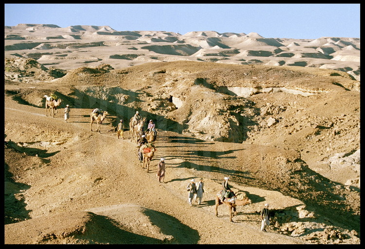 Transfer: The expedition moves from the Lundo site to the site of Hargaî, where the skeleton of the Baluchitherium will be reconstructed. In the background, the lunar landscape of the Zin massif (see caption for photo 48).